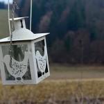 DSC_1695_vogellampe